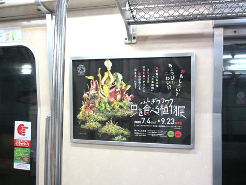 大阪地下鉄 長堀鶴見緑地線 車内 額面広告